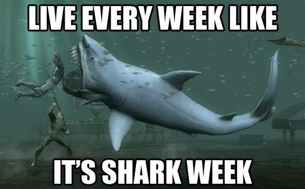 4530-shark_5f00_week_2d00_600x0